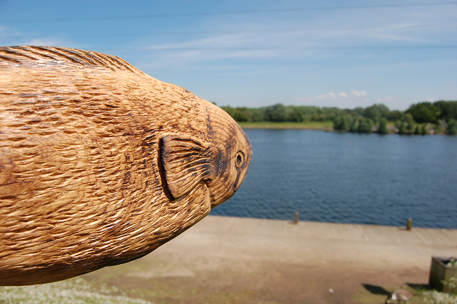 Sammy the Salmon at Sale Water Park.